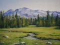 high_country_meadow