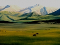 summer_grazing